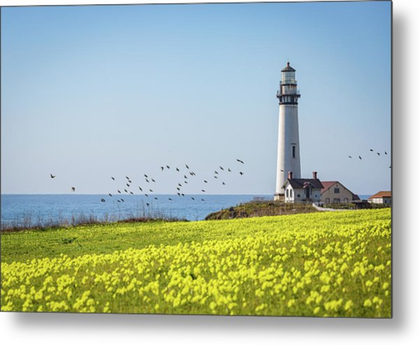 Pigeon Point Light Station Historic Park Metal Print