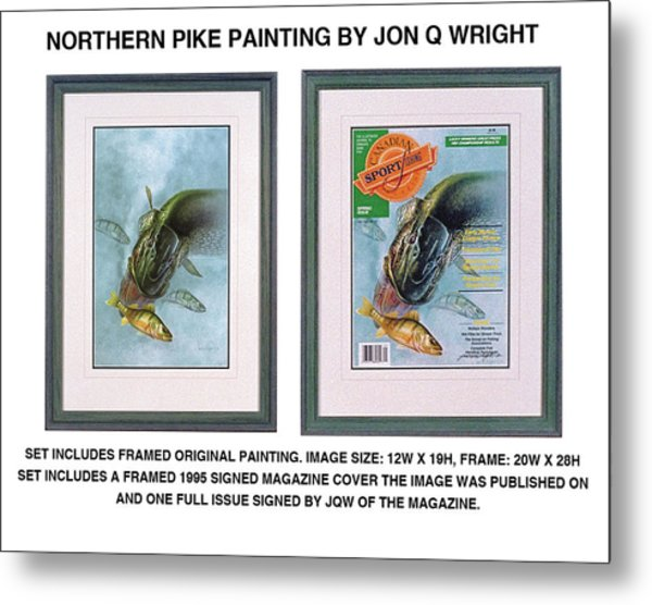 Pike And Perch Metal Print by JQ Licensing