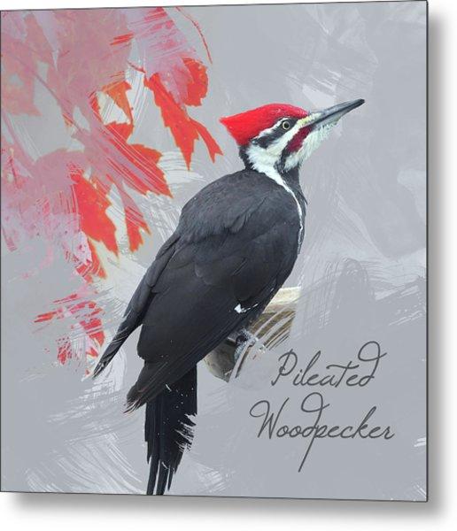 Pileated Woodpecker Watercolor Photo Metal Print