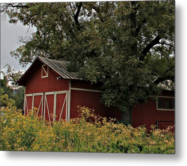 Metal Print featuring the photograph Pine Barn by Matalyn Gardner