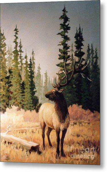 Pine Meadow Elk Metal Print by JoAnne Corpany