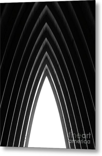 Pine Metal Print by Tapio Koivula