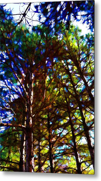 Pine Trees In Abstract 1 Metal Print