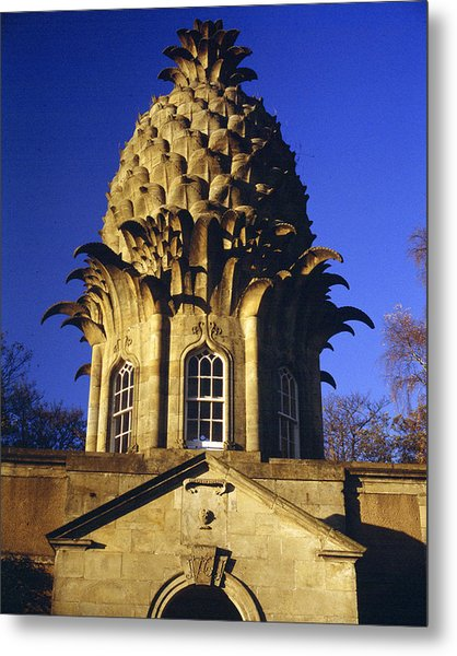 Pineapple In Scotland Metal Print by Donald Buchanan