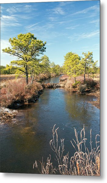 Pinelands Water Way Metal Print