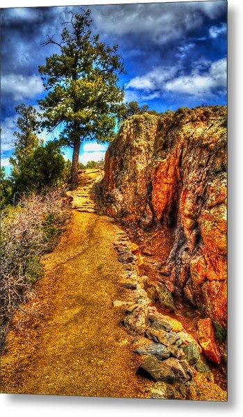 Ponderosa Pine Guarding The Trail Metal Print