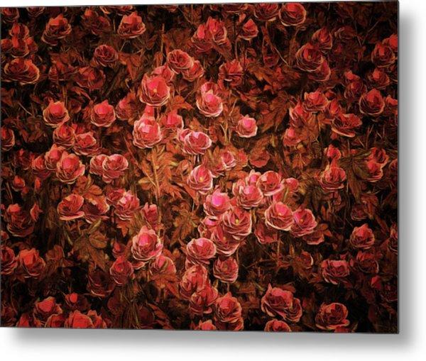 Metal Print featuring the painting Pink Bionica Roses by Jan Keteleer