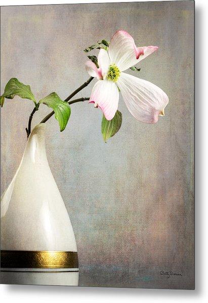 Pink Cornus Kousa Blossom In Creamer Metal Print