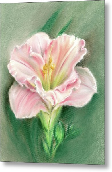 Pink Daylily And Green Buds Metal Print