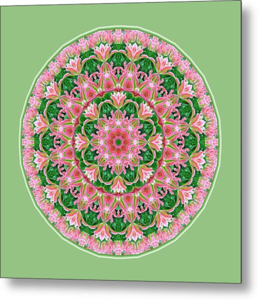 Metal Print featuring the digital art Pink Delight by Lynde Young