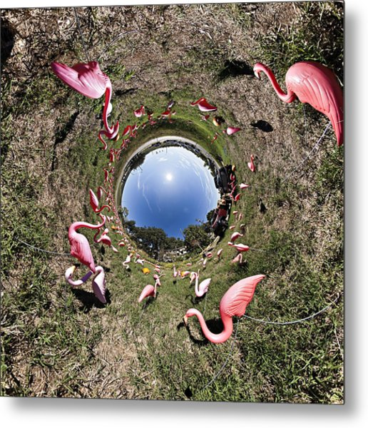 Pink Flamingo Rabbit Hole Metal Print