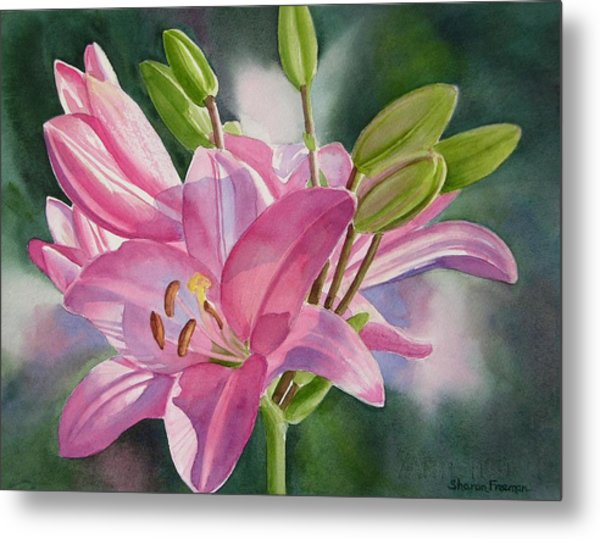 Pink Lily With Buds Metal Print by Sharon Freeman