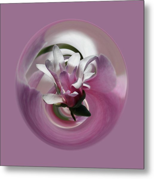 Metal Print featuring the photograph Pink Magnolia 2 by Jim Baker