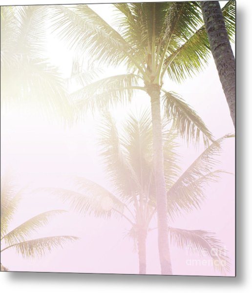 Metal Print featuring the photograph Pink Palms by Cindy Garber Iverson