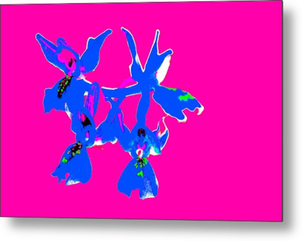 Pink Provence Orchid Metal Print