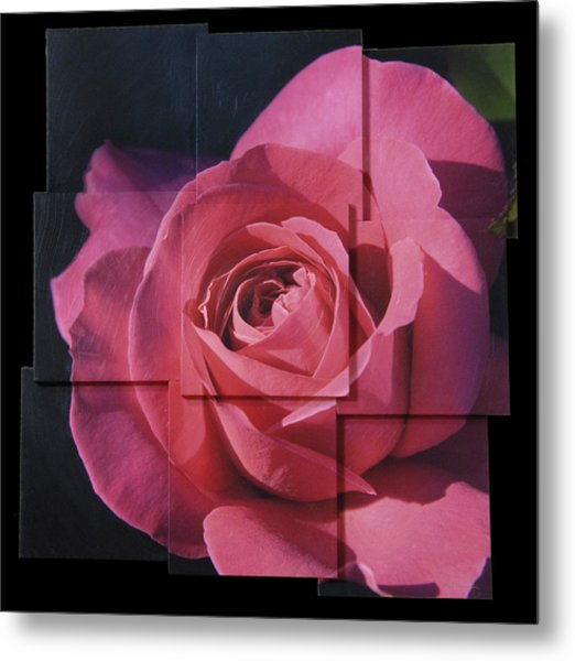 Pink Rose Photo Sculpture Metal Print