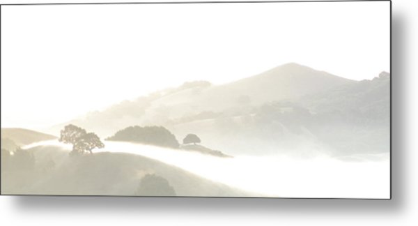 Pinole Valley Morning Mist Metal Print