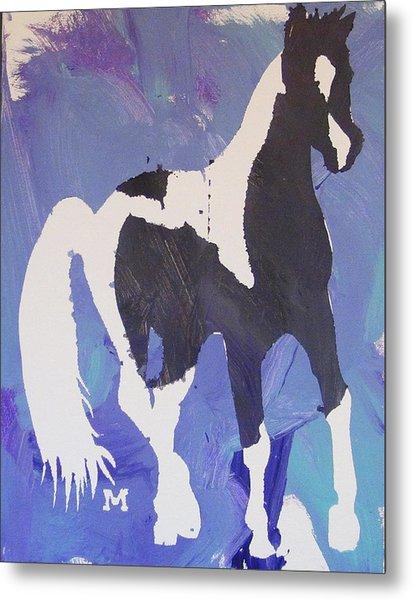 Pinto Pony Metal Print