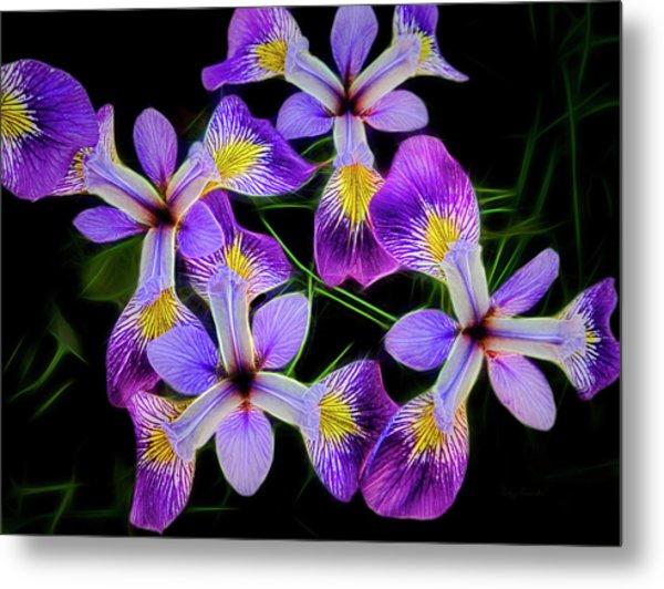 Pinwheel Purple Iris Glow Metal Print