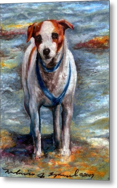 Piper On The Beach Metal Print by Melissa J Szymanski