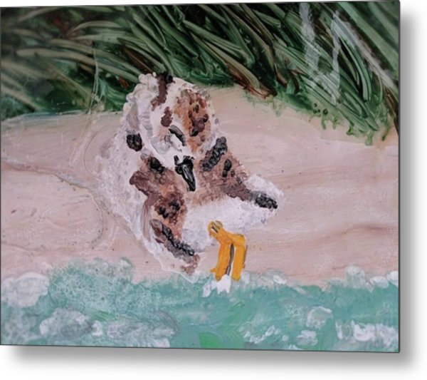 Piping Plover Chick 2 Metal Print