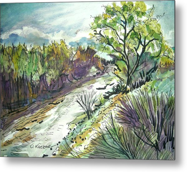 Placerita Creek 3 Metal Print by Olga Kaczmar