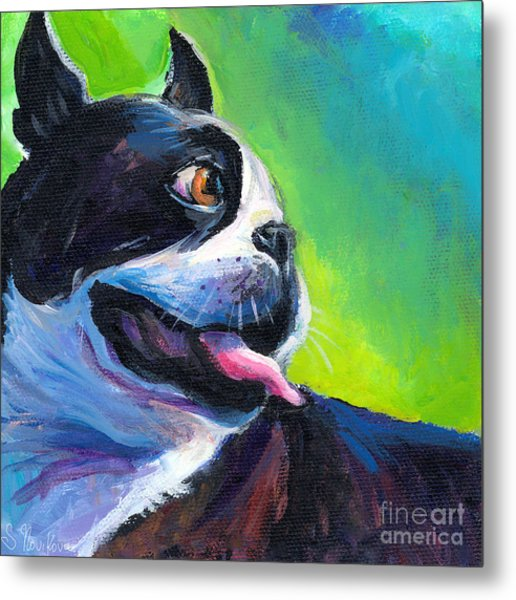 Playful Boston Terrier Metal Print