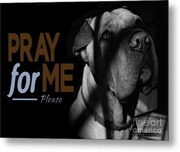 Please Pray For Me Metal Print