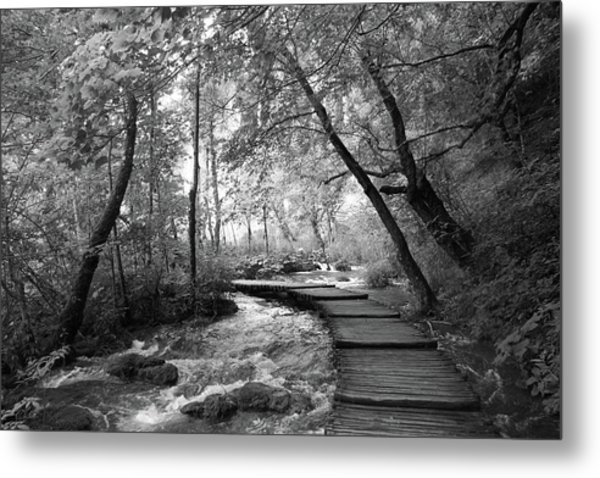 Plitvice In Black And White Metal Print