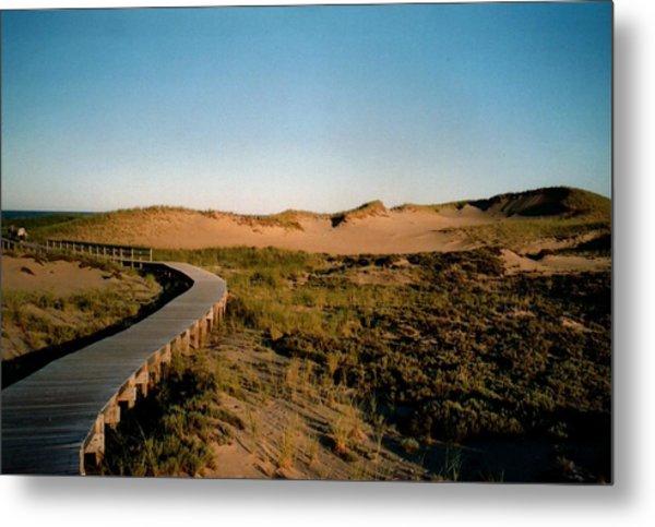 Plum Island Dunes Metal Print