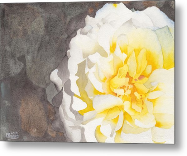 Point Defiance White Flower Metal Print