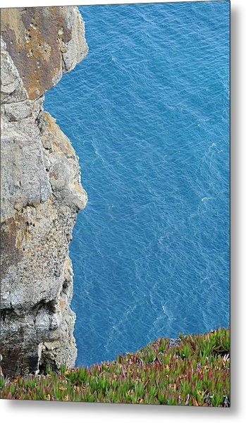 Point Reyes Cliffs Metal Print