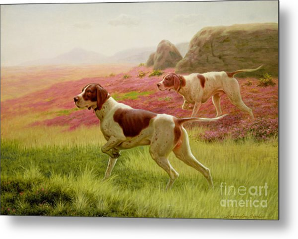 Pointers In A Landscape Metal Print