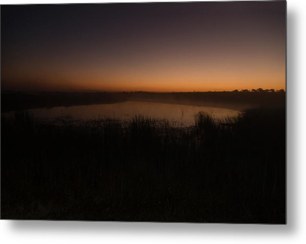 Pond And Cattails At Sunrise Metal Print
