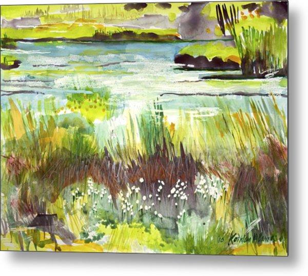 Pond And Plants Metal Print