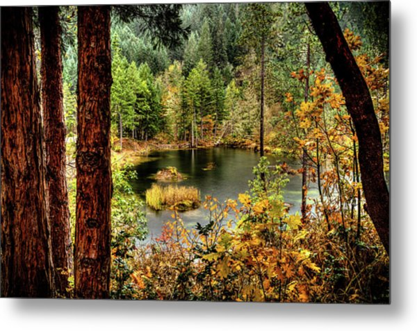 Metal Print featuring the photograph Pond At Golden Or. by Jim Adams