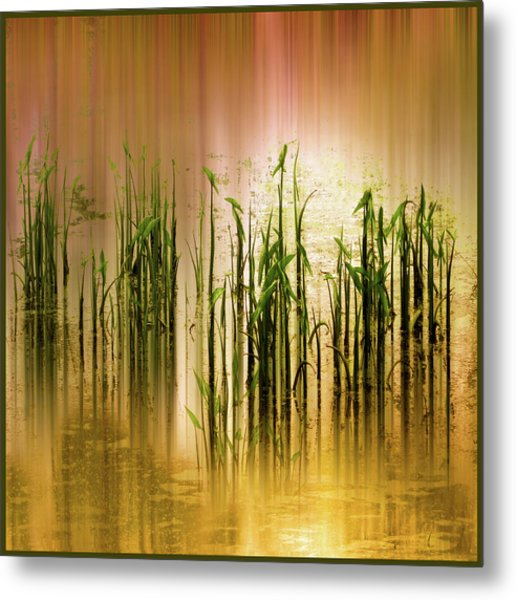 Metal Print featuring the photograph Pond Grass Abstract   by Jessica Jenney
