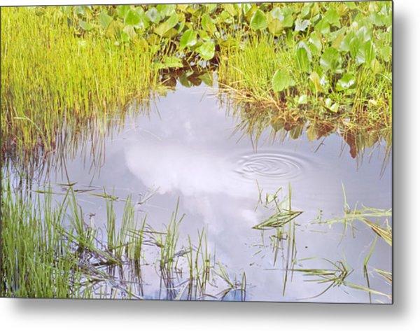 Pond Ripples Photo Metal Print