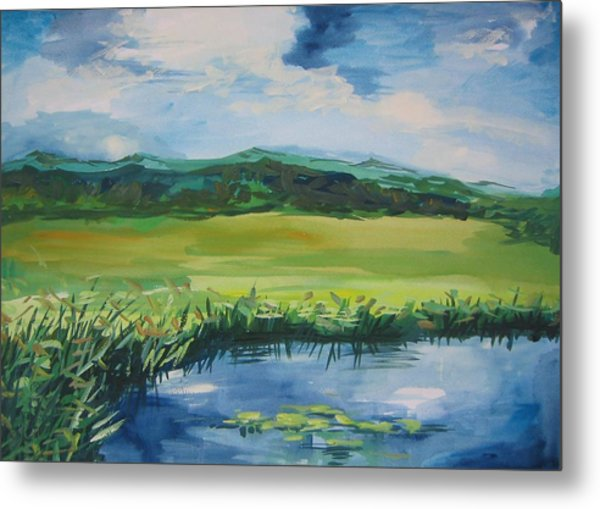 Pond Valley Metal Print by Min Wang