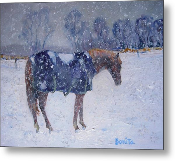 Pony In The Snow Metal Print