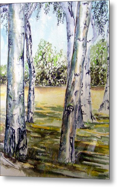 Poplar Tree   Metal Print by Paul Sandilands