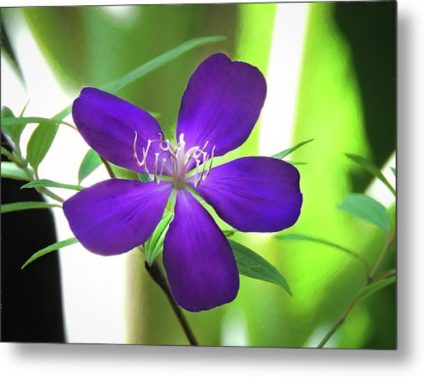 Metal Print featuring the painting Poppin Purple Flower by Penny Lisowski