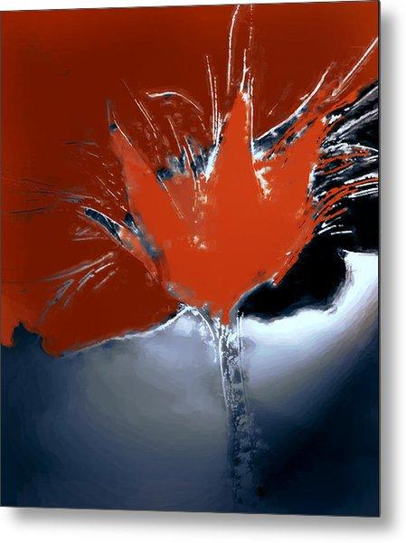 Poppy Explosion Metal Print by Irma BACKELANT GALLERIES
