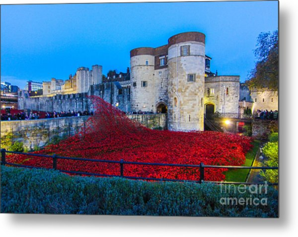 Poppy Flowers Tower Of London Metal Print