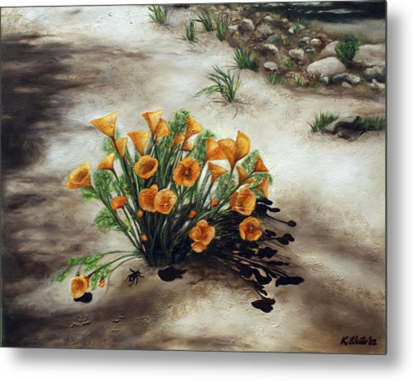 Poppy Oasis Metal Print by Kathy Shute