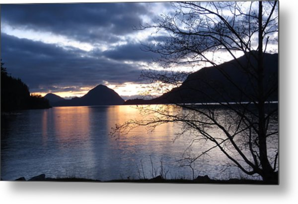 Port Eau Cove Metal Print