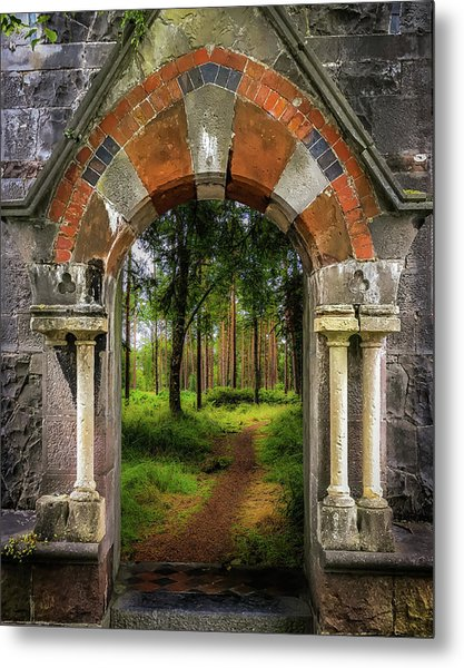 Metal Print featuring the photograph Portal To Portumna Forest by James Truett