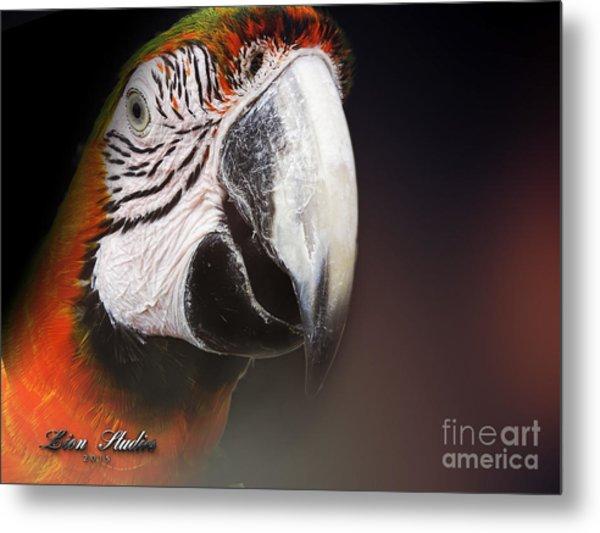 Portrait Of A Parrot Metal Print