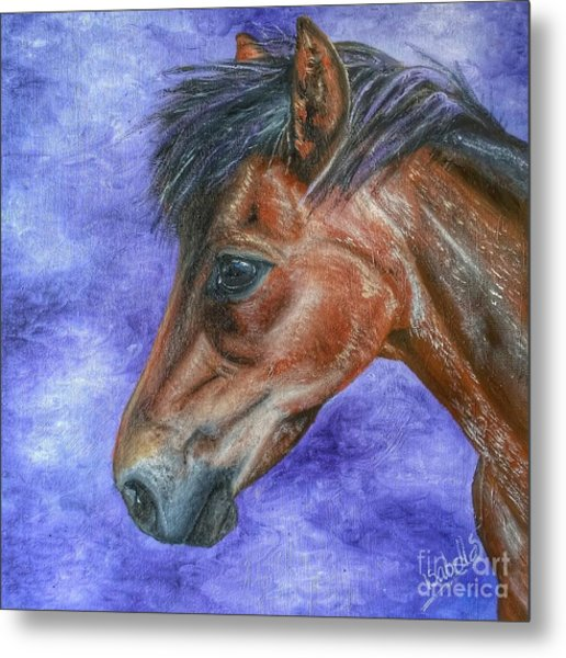 Portrait Of A Pony Metal Print