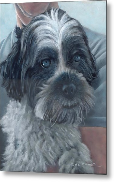 Portrait Of Charley Metal Print